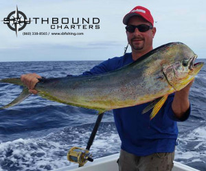 Mahi fishing on Southbound Charters