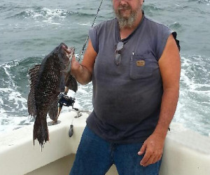 Sea Bass fishing aboard Southbound Charters out of Waterford CT
