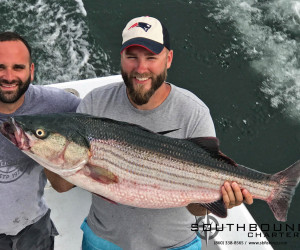 Striped bass fishing with Southbound Fishing Charters